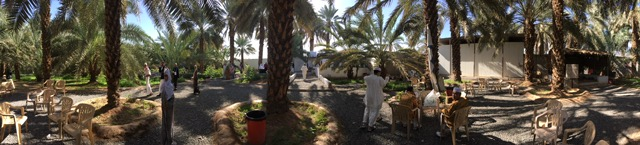 Palmeraie de Medine Omra Tawhid Travel